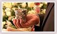 Jewish Wedding Handbook