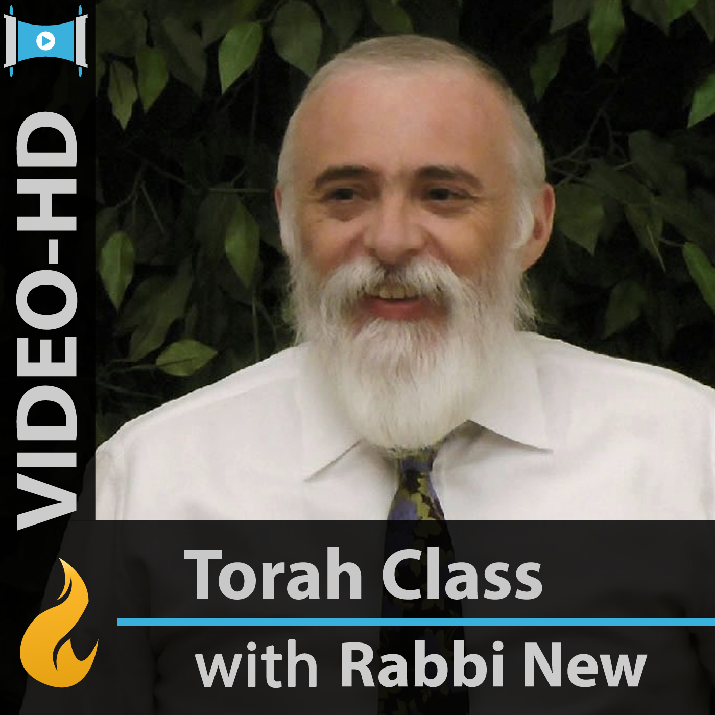 Commentaries on the Torah (Video-HD)